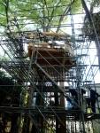 The treehouse with scaffolding