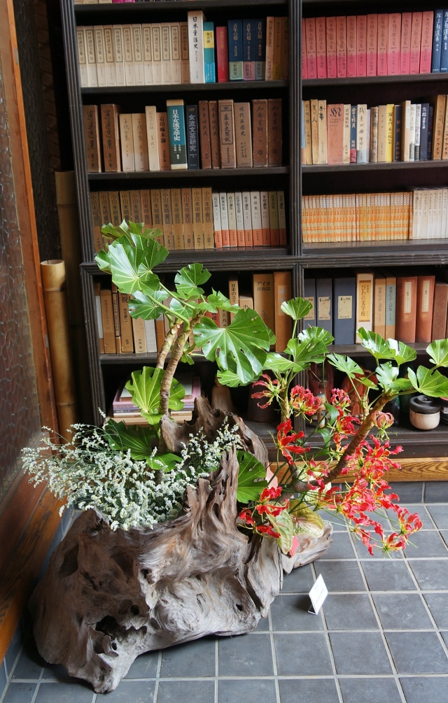Side view- installation in the entryway: my composition using driftwood, gloriosa lily, yatsude branch, anthurium, baby's breath.